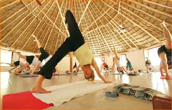 семина в университете йоги