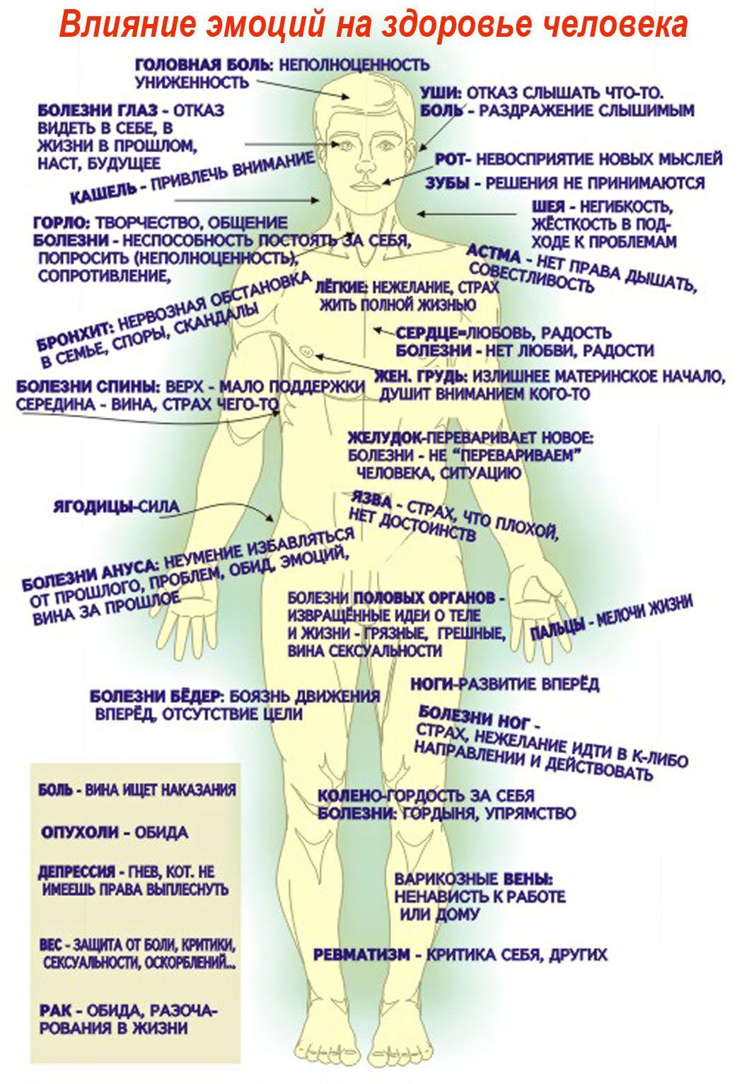 Таблица сексуальных терминов 26 фотография
