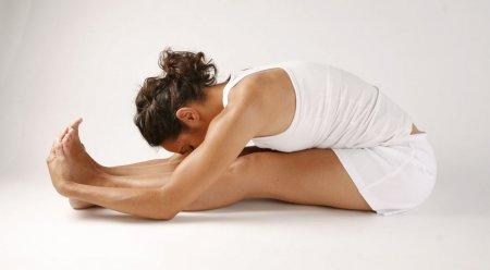 Асаны йоги вернут молодость и здоровье позвоночнику