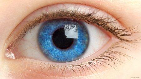 Курс коррекции и оздоровления зрения
